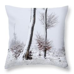 """Snowy Trees Throw Pillow by Ren Kuljovska.  Our throw pillows are made from 100% spun polyester poplin fabric and add a stylish statement to any room.  Pillows are available in sizes from 14"""" x 14"""" up to 26"""" x 26"""".  Each pillow is printed on both sides (same image) and includes a concealed zipper and removable insert (if selected) for easy cleaning. Design Art, Design Ideas, Camera Art, Snowy Trees, Geometric Decor, Decor Ideas, Gift Ideas, Floral Pillows, Pin Pin"""