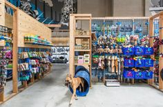 how to design a pet store - Google Search