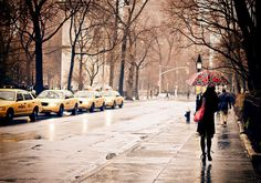 Rain - New York City - Greenwich Village - Washington Square: Enjoy a winter walk under the trees that are adjacent to Washington Square Park.