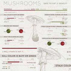 Working on a project for my super fun infographic and data visualization course. Learned way too much about mushrooms along the way.  #design #designer #ux #uxdesign #ui #hci #gradschool #infographic #data #visualization #mushrooms