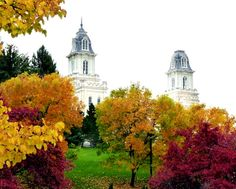 Manti Utah Temple in fall.  The sky was overcast that day but that seemed to enhance the intensity of the unbelievable colors.