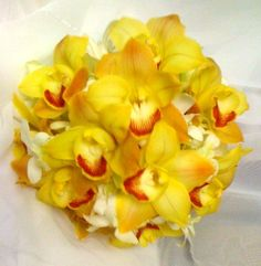 Colonial bouquet of yellow Cymbidium #orchids.