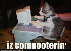Hehe, cute!! Even kitties can check their email and browse I can has Cheezburger.
