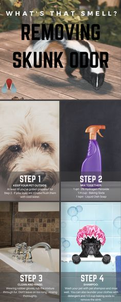 Get Rid of that Skunk Smell- Quick & Easy Skunk Odor Removal