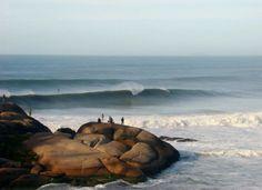 Foto: Raposa (deolhonomar)  www.camerasurf.com.br