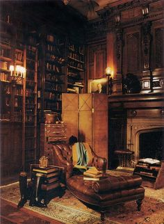Dream Library .... a glowing fire, a cup of hot chocolate as I snuggle under a plush (fake) fur throw on the supple leather chaise with my current reading treasure ...