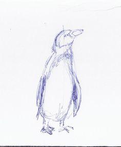 Vorbereitungen für die Malevents und Aquarellkurse im Rostocker Zoo | Skizze Pinguin frontal (c) Frank Koebsch