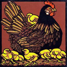 Orpington Black - linocut by Jill Kerr. Beautiful detail in this reduction print!