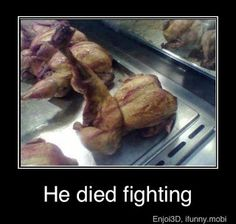 Every chicken was kung fu fighting, though they were not as fast as lightning, my have been just a little bit frightening, to see those chickens fighting..... I make myself laugh.