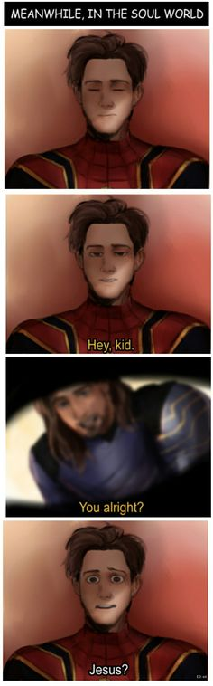 Meanwhile, in the soul world ... || Avengers Infinity War || Spider man & Bucky || Cr: kirschade