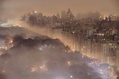 fog, parks, travel, nyc, new york city, place, central park, york citi, photographi