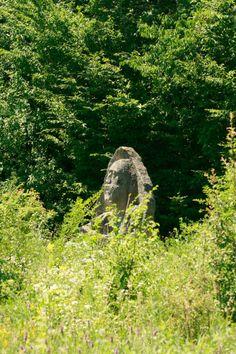 Poiana cu statui - Barnova
