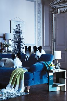#Willoughby #Sofa #Anthropologie