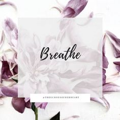 Selah. Inhale fresh grace. It is available. It is sufficient. Rest in it.