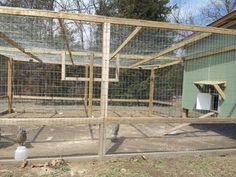 """O"" Family Chicken Coop - BackYard Chickens Community"