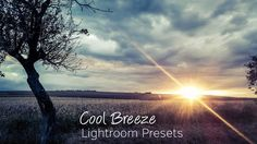 This set of 4 Lightroom presets can be downloaded and used with your own photos in Adobe Lightroom. The presets will take some of the color out of the photo and cool down the temperature, resulting…