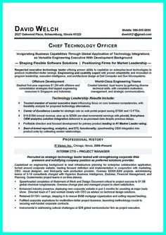 cto resume or chief technical officer resume can be considered as resume for senior level technology resume examples
