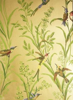 Augustine Wallpaper A printed wallpaper on a bronze background featuring colourful birds amongst  wildflowers and plants.