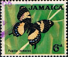 Jamaica 1964 Butterfly Fine Used       SG Scott 223       Other West Indies and British Commonwealth Stamps HERE!