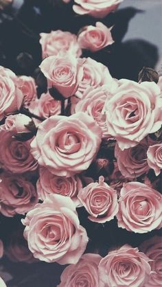 Image shared by princess. Find images and videos about flowers, wallpaper and rose on We Heart It - the app to get lost in what you love. Et Wallpaper, Flower Wallpaper, Wallpaper Backgrounds, Iphone Backgrounds, Nature Wallpaper, Rose Gold Wallpaper, Rose Gold Lockscreen, Flower Lockscreen, Backgrounds Marble