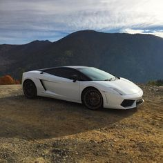 Admiring the view. #ItsWhiteNoise #Lamborghini #SupercarsofLondon