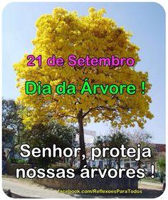 21 de setembro - Dia da Árvore Clique na imagem e acesse mensagens a respeito e a prece da árvore. http://reflexoesparatodos.blogspot.com.br/2013/09/21-de-setembro-dia-da-arvore.html