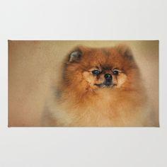 Jai Johnson 'Proud Pomeranian' Canvas Art Trademark Fine Art Canvas Size, Canvas Art, Canvas Prints, Art Prints, Eyeshadow Makeup, Mens Gift Sets, Baby Clothes Shops, Wrapped Canvas, Graphic Art