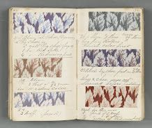 Textile sample book with formulas for dyestuffs - Old Pacific Print Works - Lawrence, Mass.