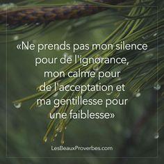 Ne prends pas mon silencepour de l'ignorance,mon calme pourde l'acceptation etma gentillesse pourune faiblesse