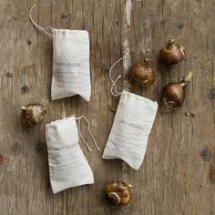 paperwhite gift bags | frolic!