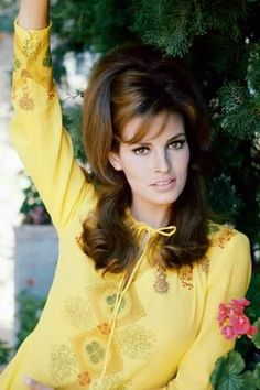 Raquel Welch They had two children Damon Welch (born and Tahnee Welch (born Tahnee went on to take advantage of her own stunning looks as an actress, most notably a prime featured role in Cocoon Rachel Welch, Illinois, Raquel Welch 1960s, Katharine Ross, 60s Hair, Portrait Photo, Photo Art, Classic Beauty, Beautiful Actresses