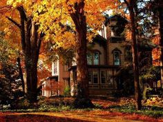 The October Country Beautiful Homes, Beautiful Places, October Country, October 23, Autumn Scenes, Autumn Cozy, Late Autumn, Autumn Aesthetic, All Nature