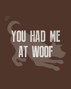 You had me at woof! 🥰🐶 #WeeklyPLAYQuote #dogquotes #dogmoments #dogsarethebest #dogloversfeed #dogslife #dailydogs #wedontdeservedogs #dogsarebetterthanhumans #dogsareloves #dogsarethebest #dogsmakeeverythingbetter #dogmeme #introvert #caninetrovert #dogsayings #dogjokes #dogmomaf #mood Cute Cat Quotes, Dog Quotes Funny, Funny Dogs, Cute Dogs, Play Quotes, Dog Jokes, Animal Quotes, Four Legged, Introvert