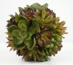 This life-like succulent sphere is wide and is filled with 6 varieties of natural touch succulents. Adds a luscious, green texture to your decorated space. For an eye-catching centerpiece display, put several of these balls in paint-dipped terrac Artificial Succulents, Faux Succulents, Planting Succulents, Types Of Moss, Paint Dipping, Decorative Spheres, Green Texture, Save On Crafts, Wedding Table