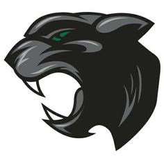 Mehlville HS Panthers