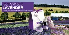 Cotswold Lavender: THE BRITISH SHOP - Magazin