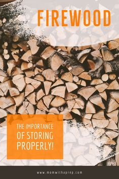 Importance of Firewood Storage: What You Need To Know Survival Tips, Survival Skills, Start Of Winter, Wood Supply, Roasting Marshmallows, Firewood Storage, Make Good Choices, The Smoke, Mold And Mildew