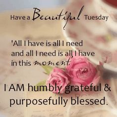 Have A Beautiful Tuesday day good morning tuesday tuesday quotes tuesday images good morning tuesday tuesday quote images Tuesday Quotes Good Morning, Happy Tuesday Quotes, Tuesday Humor, Morning Greetings Quotes, Sunday Quotes, Good Morning Good Night, Morning Wish, Good Morning Images, Daily Quotes