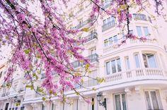 Madrid en primavera