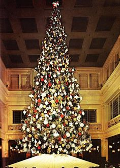 Chicago's Marshall Fields Christmas tree. Huge and magical. The REAL Santa was here too.