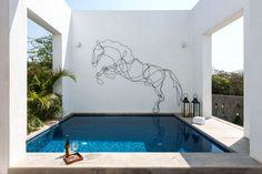 The wire outline of a horse on the wall above a plunge pool adds an artistic touch to this modern house.