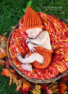Pumpkin/Fall Baby