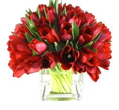 red tulip centerpiece in clear glass