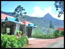 guesthouse for climbing adams peak tuk tuk from hatton sunday, bus from galle to colombo stops at kitulgala and hatton