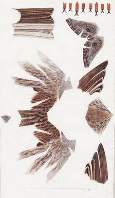 Interview with Paper Artist and Painter Johan Scherft