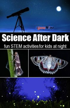 Science after dark at night for kids. Fun STEM activities for a summer night: stargazing learn constellation, catch moth and firefly to learn animal behavior and nature light, moon phases, . Nature Activities, Science Activities For Kids, Steam Activities, Science Experiments Kids, Summer Activities, Science Ideas, Science Fair, Activity Ideas, Kid Science