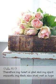 Shabby and Beautiful Beautiful Roses, Fresh Flowers, Beautiful Flowers, Colorful Roses, Exotic Flowers, Simply Beautiful, Purple Flowers, Rose Cottage, Shabby Cottage