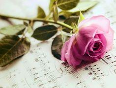 Love poems:: Tiptoe Through My Heart