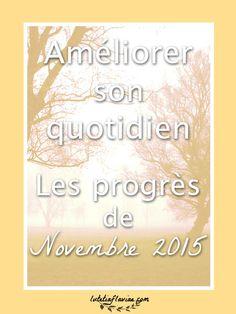 Les progrès du mois de Novembre 2015 pour améliorer son quotidien : les leçons apprises, les défis remportés ou perdus.Le bilan sur lutetiaflaviae.com