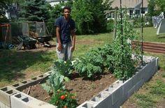 put old wood in the bottom - it absorbs & releases rainwater.    2013 0622 garden cinder blocks3